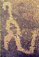 The supposed 'Tyrannosaur' pictogram