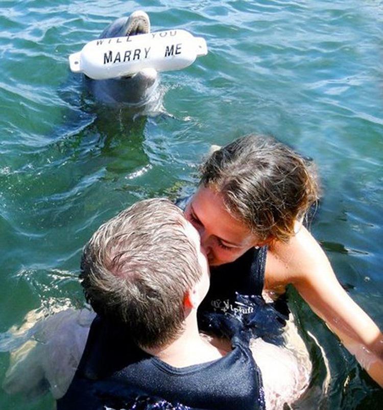 Men who took Marriage Proposal the the next Level (27 Photos) 26