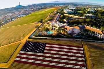 america field