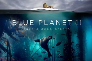 Blue Planet II : The Prequel 1