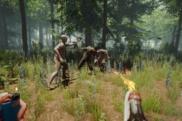 The Forest 1 game