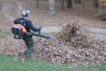 Dad Scare-jump Like Crazy while Blowing Leaves 1