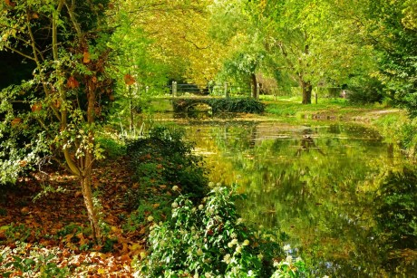 Autumn Time by the River David Bailes