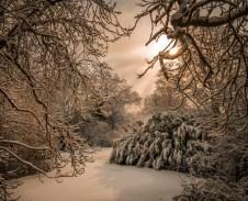 Narnia Richard Huckett