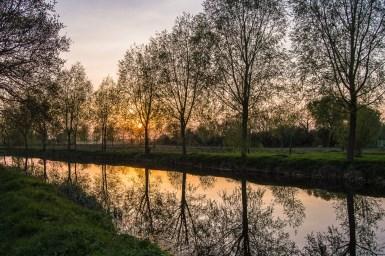 fran reflections in landscape