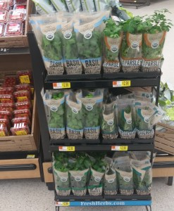 Fresh Herb Plants at Wal-Mart