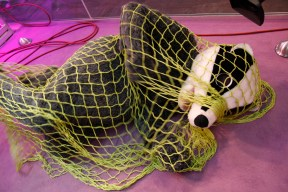 man in badger suit in a net