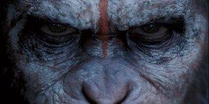 apes revolution - banner