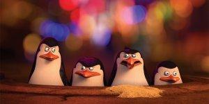 pinguini di madagascar curiosità