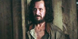 harry potter gary oldman sirius black