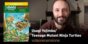 Usagi Ninja Turtles