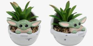 Baby Yoda pianta grassa the mandalorian