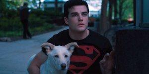 Titans Joshua Orpin racconta l'emozionante storia del cane che interpreta Krypto