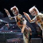 Cats: i gatti nel musical di Tom Hooper saranno realizzati in CGI tramite la motion-capture