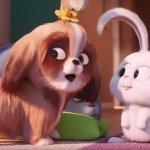 Pets 2 – Vita da Animali: ecco Daisy in un nuovo teaser del film animato