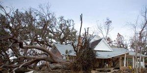 hurricane-katrina five days at memorial
