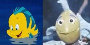 Flounder sirenetta