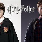 Harry Potter e Animali Fantastici: ecco i nuovi cofanetti DVD, Blu-Ray e 4K!