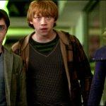Harry Potter: in India un corso universitario basato sul mondo magico tra elfi domestici e lupi mannari