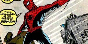spiderman-web-s