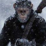 The War – Il Pianeta delle Scimmie: la battaglia comincia in un nuovo spot