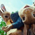 Peter Rabbit: ecco il nuovo trailer italiano del film targato Sony