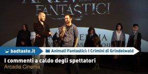 Animali Fantastici: I Crimini di Grindelwald, i commenti a caldo degli spettatori di Arcadia Cinema