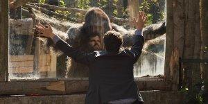 Attenti al Gorilla: ecco il trailer della commedia di Luca Miniero con Frank Matano e Lillo