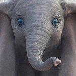 Dumbo: un nuovo video ci porta dietro le quinte del film di Tim Burton