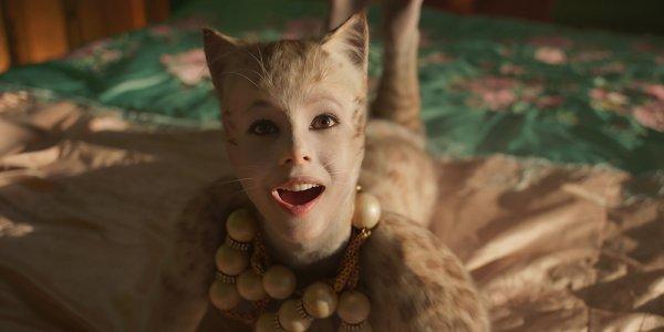 cats cgi