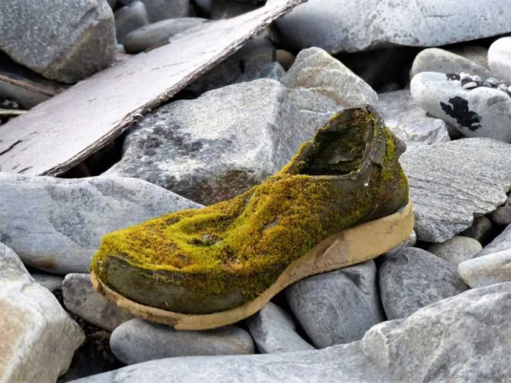 Ein Schuh aus dem Meer