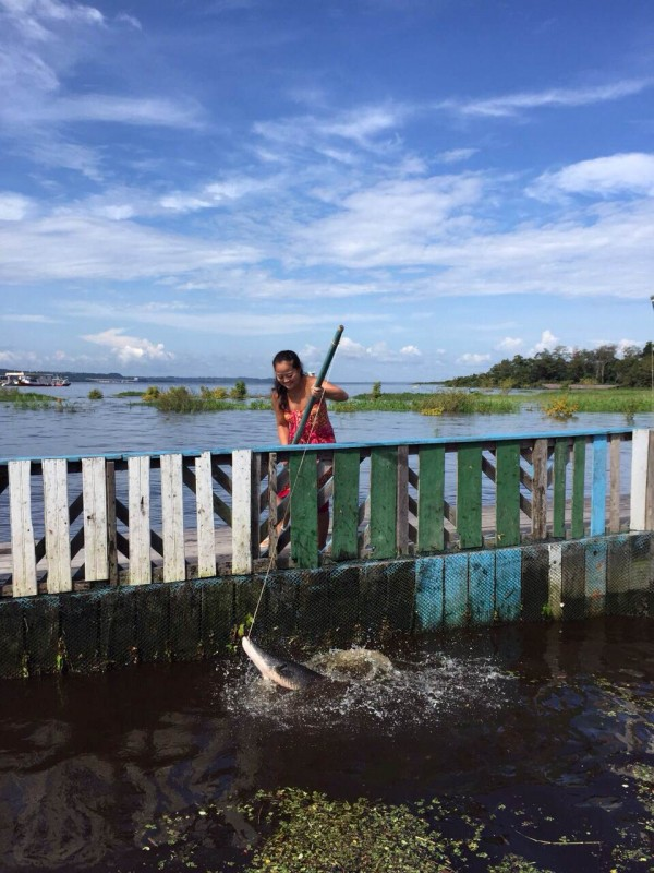 Pescaria-pirarucu-Manaus