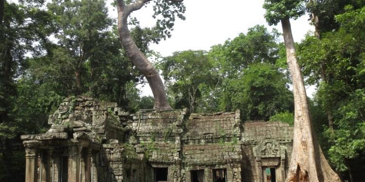 ta-prhom-templo-camboja
