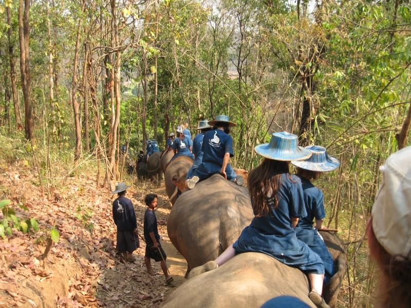 passeio-elefante-tailandia