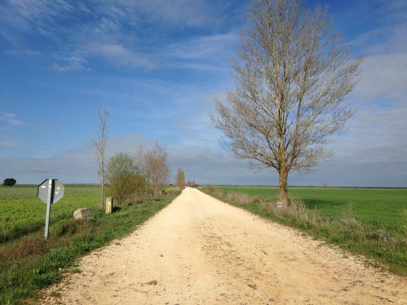 camino_meseta