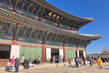 Conexão Coréia do Sul - Free transit tour