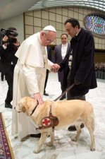 Pope Francis Blesses Dog