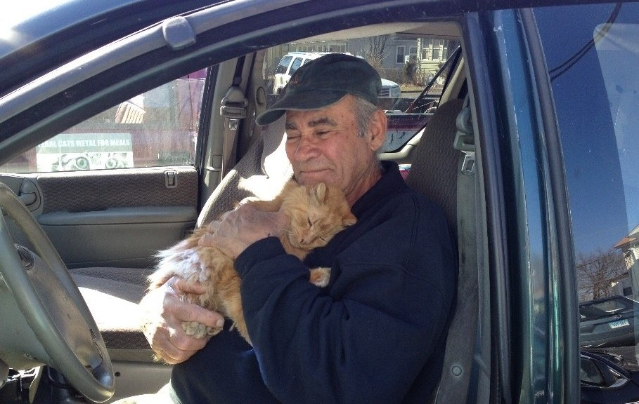 This Kind Human Has Helped Feral Cat Colonies for 22 Years!