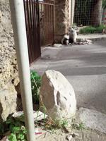 Vandalizzato un pilastrino all'ingresso di Palazzo Cutò