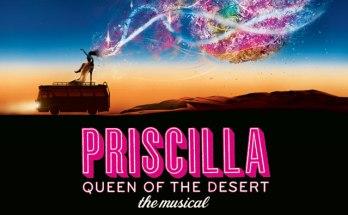Priscilla, Queen of the desert <br> Priscilla, Folle du Désert