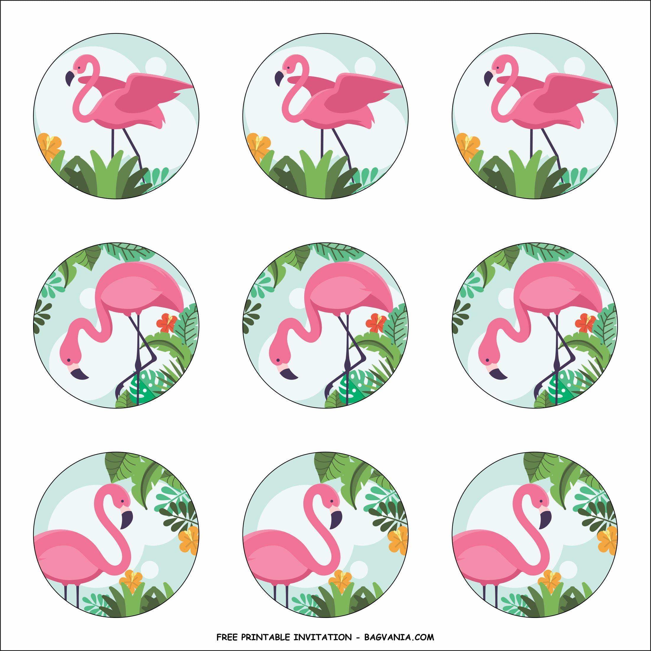 free flaming flamingo birthday party