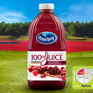 100% Juice Cranberry Pomegranate