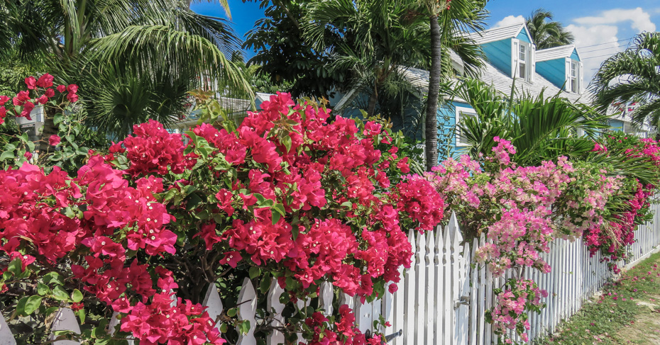 Colonial Dunmore Town on Harbour Island, Eleuthera Island the out islands Bahamas. Take flights to North Eleuthera with Bahamas Air Tours. Bahamas Day Trips and Island hopping tours
