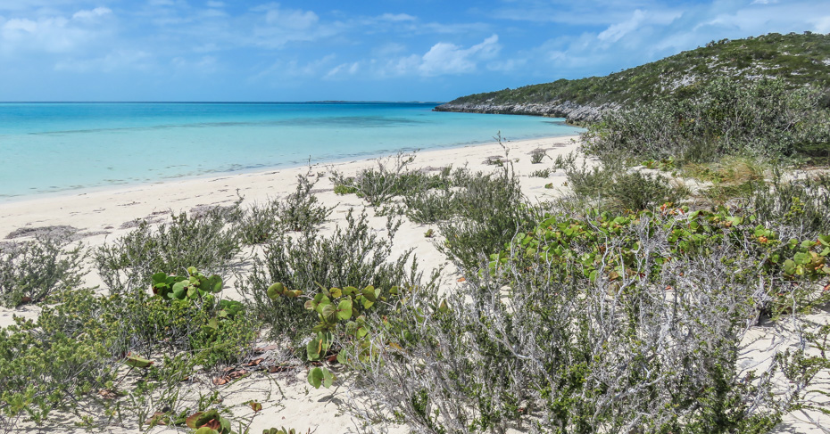The beach at Bitter Guana Cay is home to the Bahama Rock Iguana, which you can visit by boat excursion from Staniel Cay Bahamas. Flights to Bahamas are provided by Bahamas Air Tours who operate day trips to Bahamas and excursions.