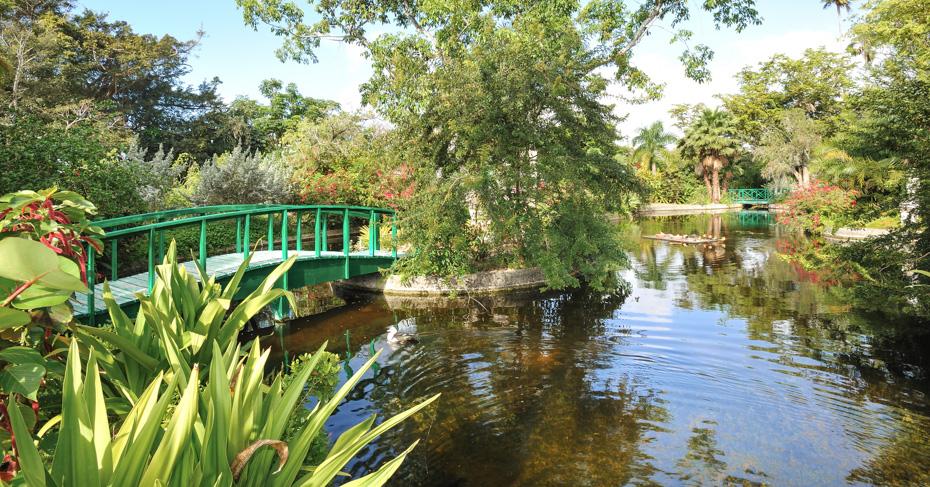 Grand Bahama Garden of Groves. Freeport Bahamas things to do on Grand Bahama  Island.
