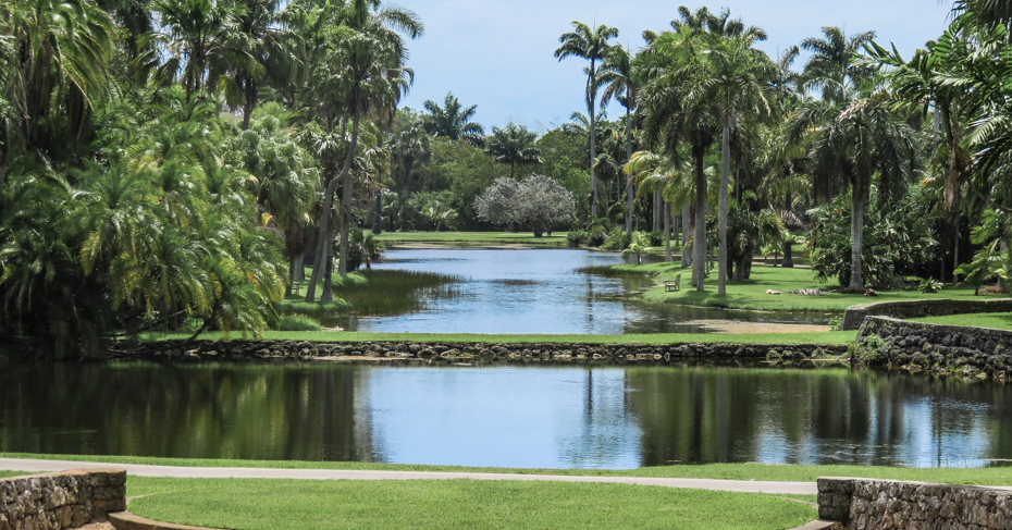 Fairchild Tropical Botanic Garden best things to do in Miami. These Florida Botanic Gardens are the Fairchild gardens Miami. Located close to the Coral Gables, south of Downtown Miami, close to Coonut GRove Miami.