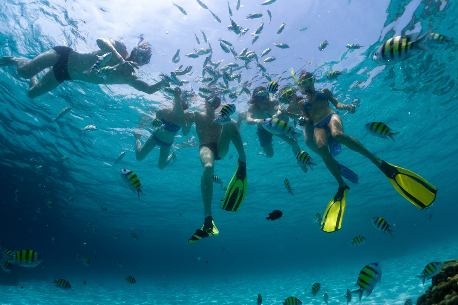 Underwater shot of the group of friends snorkeling in clear sea with fish Bahamas cruise from Miami to Bahamas from Bahamas Air Tours Day trip to Bahamas is one of the best one day trip from Miami to Bahamas. A Day Cruise Miami is the perfect one day trip to Bahamas