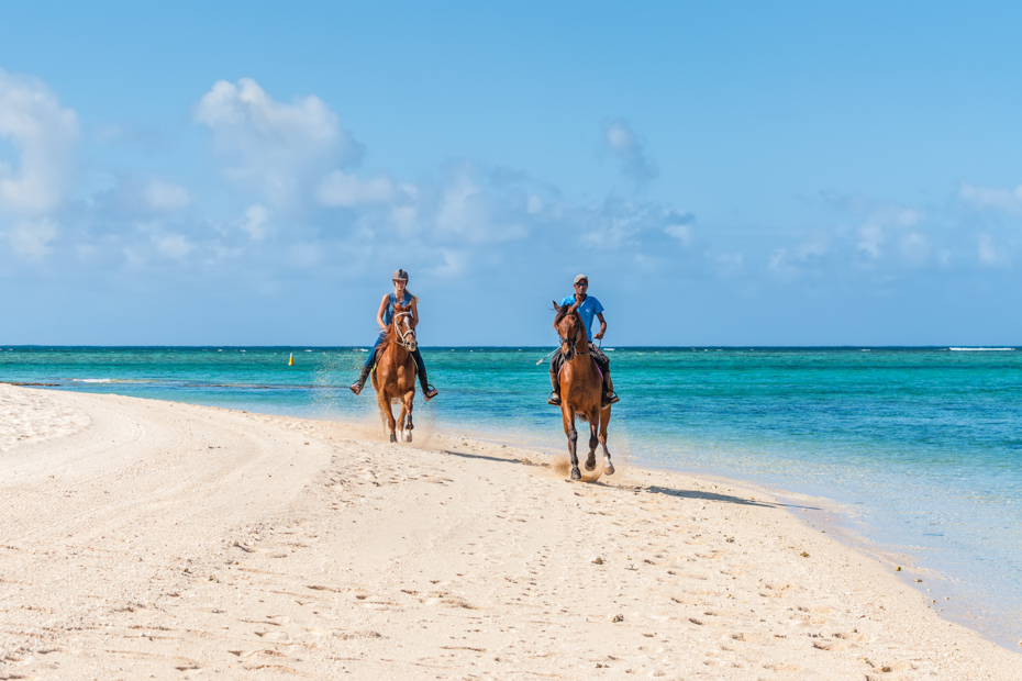 Why Horseback Riding Bahamas is one of the top Beach Activities