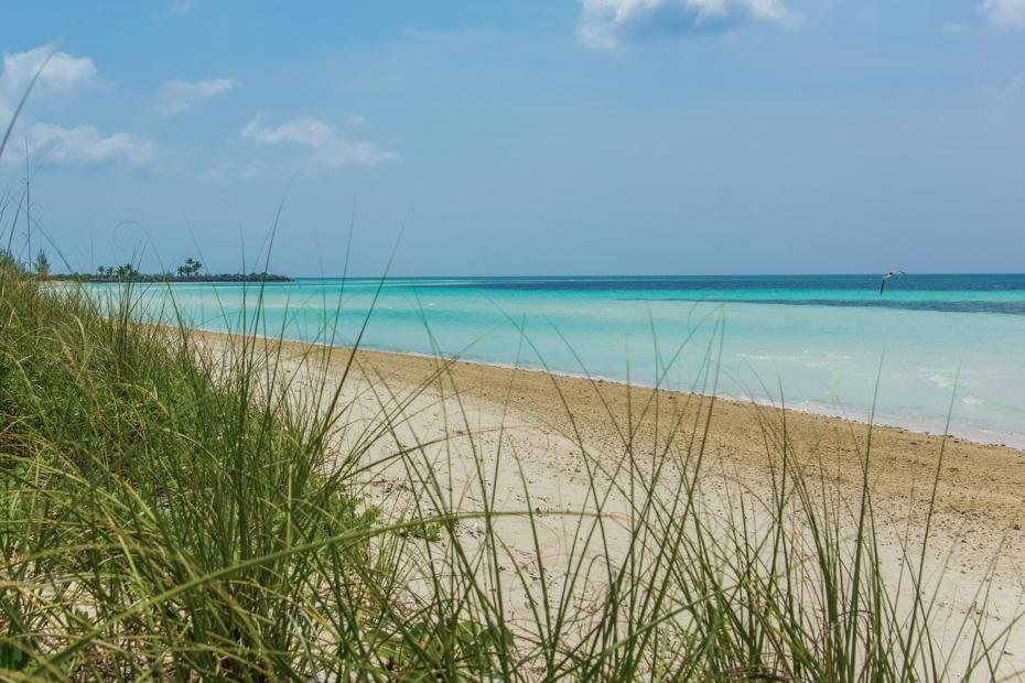 Freeport Bahamas Beach near Cruise Port