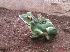 İkili Kurbağa Heykeli